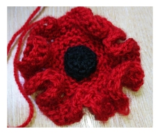knitted poppy2